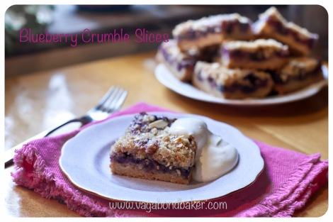 Blueberry Crumble Slices | Vagabond Baking