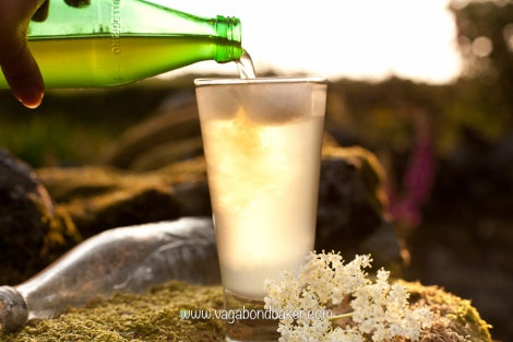 Elderflower Cordial | Vagabond Baking
