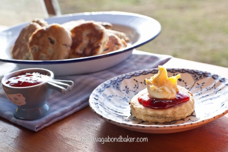 Campervan Friendly Welsh Cream Tea